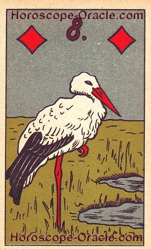 Stork is your horoscope