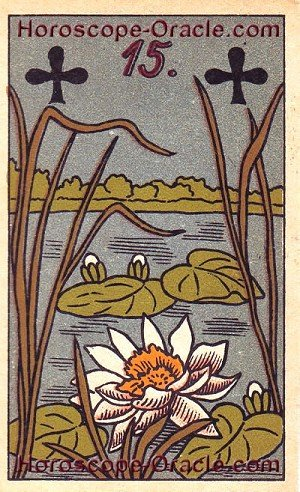Lenormand Horoscope card the Nile Cabbage