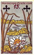 The Nile-Cabbage, meaning of Lenormand Horoscope Card
