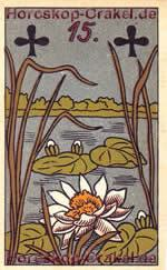 The Nile Cabbage, meaning of Lenormand Horoscope Card