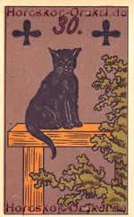 The Cat, meaning of Lenormand Horoscope Card