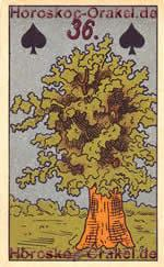 The Tree, meaning of Lenormand Horoscope Card