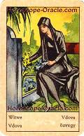 Fortune Tarot the widow meaning