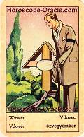 Fortune Tarot the widower meaning